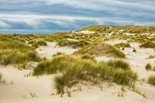 Landscape with dunes on the North Sea island Amrum