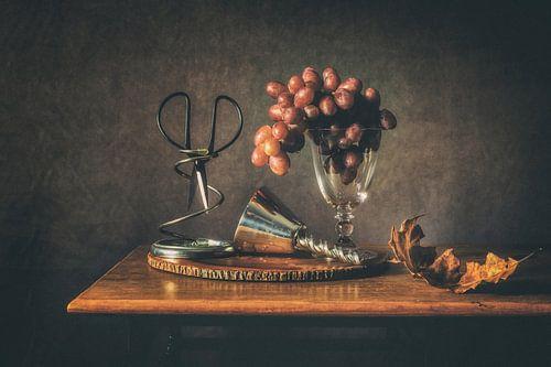Stilleven druiven van
