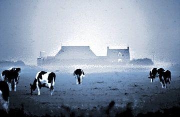 Ameland Buren landschap met koeien abstract van . Groningenart