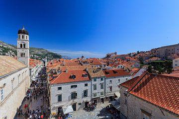 Dubrovnik sur Roy Poots