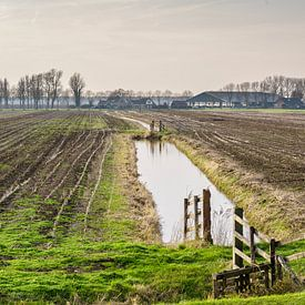 Polder landschap met boerderij van Tony Buijse