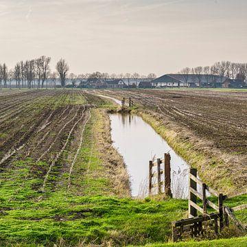 Polderlandschaft mit Bauernhof