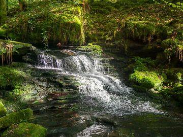Geheimer Wasserfall von Thomas Hofman