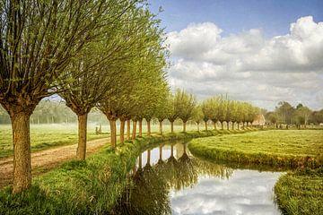 Holland van Lars van de Goor