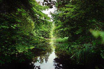 Lake Limburg van Emil Cobussen