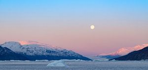 Arctic Moon van