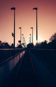 Der Weg zum Licht van
