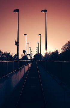 Der Weg zum Licht van Christiane Baur