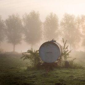 een waterkar in het veld op de oevers van de Leie tijdens een mistige ochtend in Kortrijk, Belgie van Fotografie Krist / Top Foto Vlaanderen