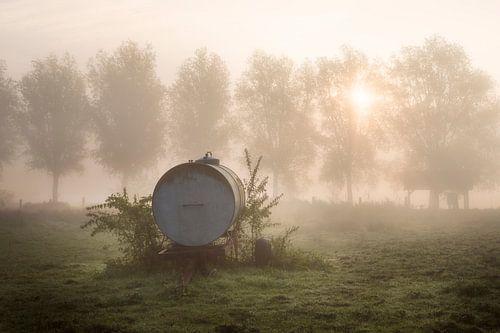 een waterkar in het veld op de oevers van de Leie tijdens een mistige ochtend in Kortrijk, Belgie