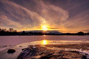 Sonnenstern am Staffelsee
