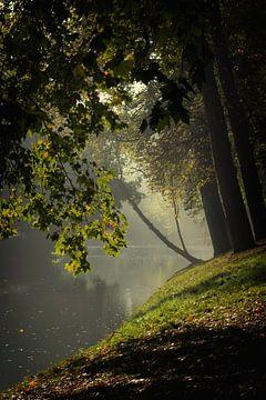 De Stadsbuitengracht ter hoogte van de Maliesingel in Utrecht in de herfst (2)