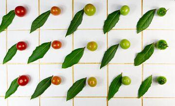 Patroon van laurier en tomaten van Ina Fischer