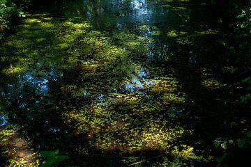 Lichtpuntjes op het water van Mandy Metz