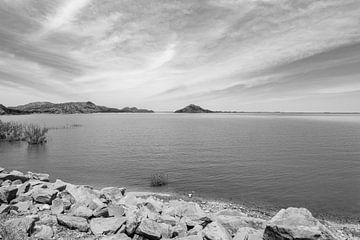 Meer in Nevada van Donny Kardienaal