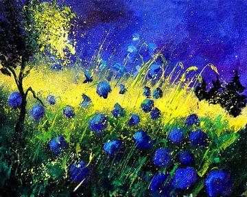 Les fleurs bleues sur pol ledent