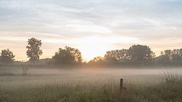 a beautiful morning van Marcel Derweduwen