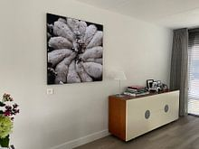 Klantfoto: Wool Flower van Riekus Reinders, als print op doek
