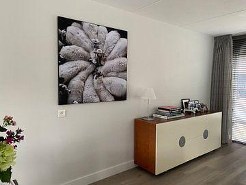 Klantfoto: Wool Flower van Riekus Reinders