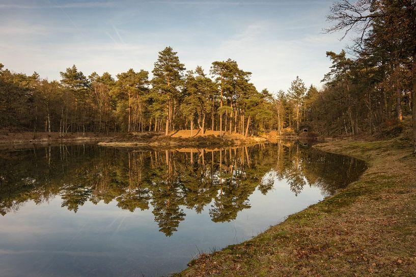 Birkhoven Bosvijver Reflectie II - Amersfoort, Nederland van Thijs van den Broek