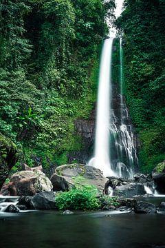 Indrukwekkende waterval op Bali van road to aloha