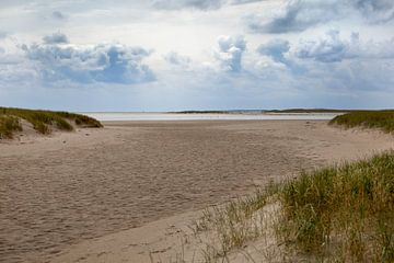 Strand van Evert Jan Kip