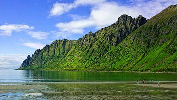 Ersfjordstranda op het eiland Senja van Gisela Scheffbuch