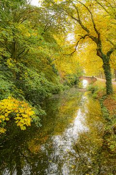 Water en herfst van Dirk van Egmond