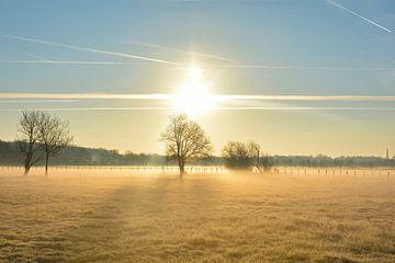 Charente-Tal bei Sonnenaufgang von Jean-François Weill Dit Morey