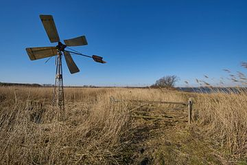 Windmolen western style in het riet van Geert van Kuyck