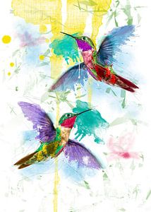fröhliche Kolibris