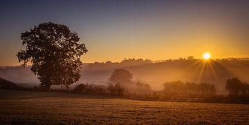 Sunrise von Wim van D