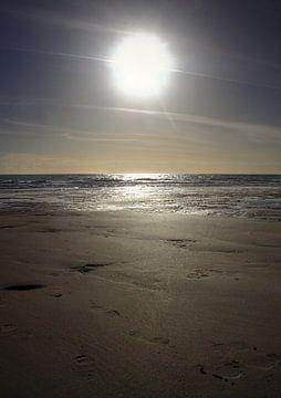 Le soleil est haut sur la plage de Zoutelande sur