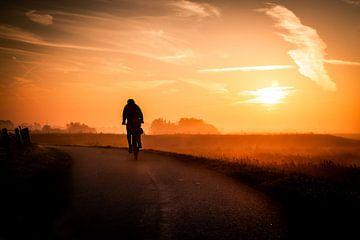 fietser van Bertrik Hakvoort