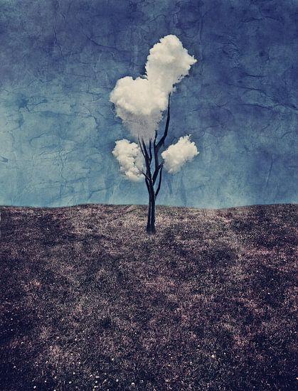 Tree Clouds van Aimelle ML