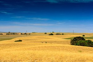 Landschap Zuid Australië