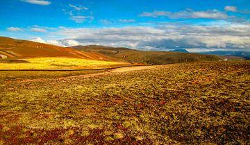 Mooie kleuren in het ongerepte landschap, IJsland van Rietje Bulthuis