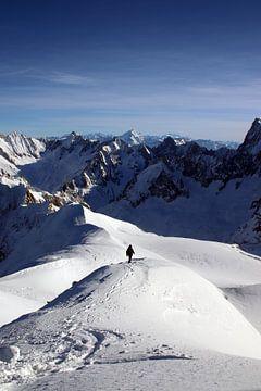 Eenzaam in de Alpen van Michaelangelo Pix