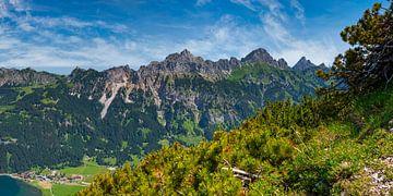 Bergpanorama vanaf de Krinnenspitze