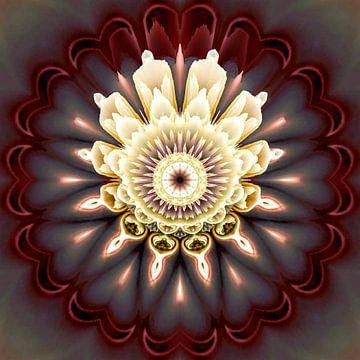 Fleur cosmique sur Nina IoKa
