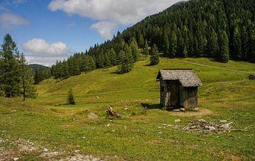 Oostenrijkse natuur van Remco de Zwijger