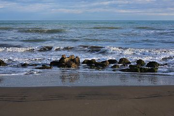 rotsen in zee van marijke servaes