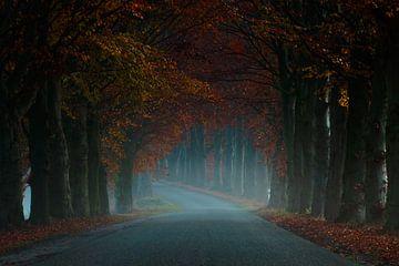 Misty Road van Martin Podt