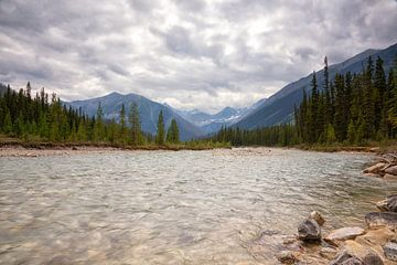 Canada Kootenay rivier van Vivo Fotografie