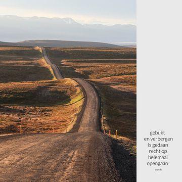 Eindeloos| Weg in IJsland | Foto en tekst van Wendy Boon