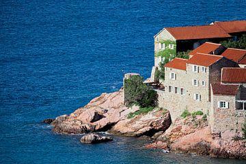 huis boven de zee. kleine huisjes met een pannendak en groene bomen aan de blauwe zee. geluk in onts van Michael Semenov