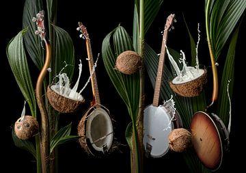 Coconut Banjo van Olaf Bruhn