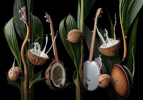 Coconut Banjo van