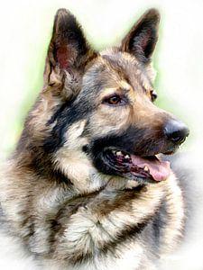 Mein Freund der Schäferhund von Roland Klinge