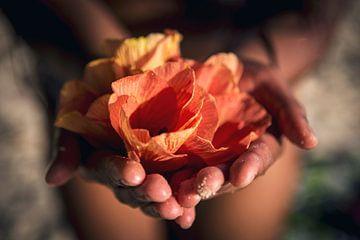 Blumen in der Hand - Französisch Polynesien Reisefotografie Fotodruck von Freya Broos